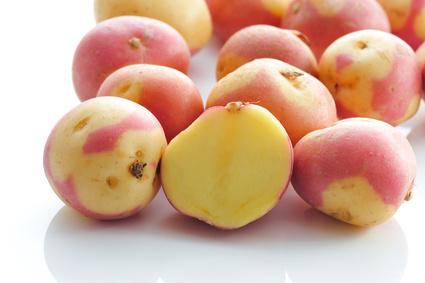 Pomme de terre œil de perdrix