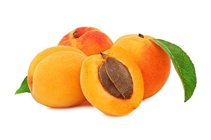 Fruits noyau prim 39 fruits - Planter noyau d abricot ...