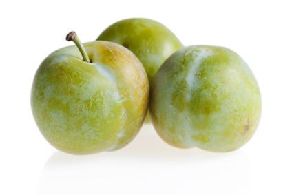 Prune Bavay multicolores
