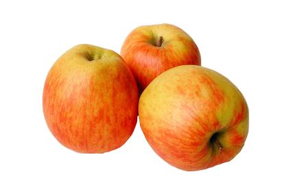 Pomme Jubilé
