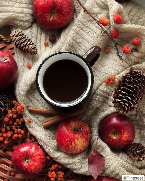 Thé noir pomme cannelle - Boissons chaudes